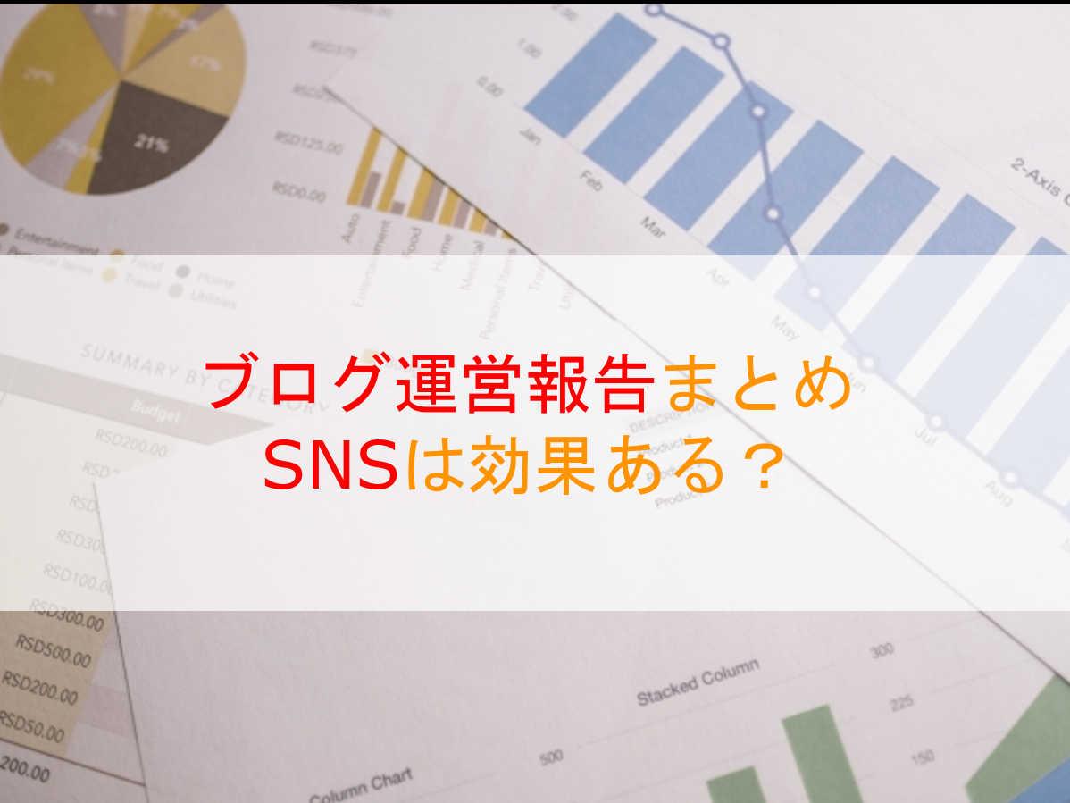 【ブログ運営報告】SNS(ツイッター)活用でアクセス数が伸びた!