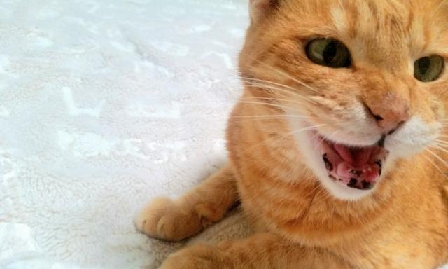 怒りを鎮める方法!この3つの方法を知れば、怒りを鎮めて穏やかになれます。